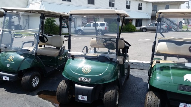 2012 EZGO RXV GOLF CART for sale at Mull's Auto Sales